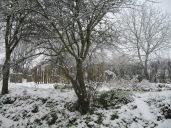 La neige! 006