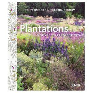 Plantations-nouvelles-perspectives